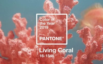 The Pantone Color of 2019 Is Warm, Glorious, and Connects Us to The World | Adobe Blog