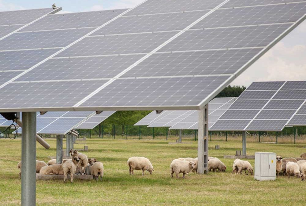 New CT law gives farms a solar opportunity